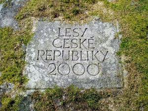 Pomník 1. výsevu modřínu na Jindřichohradecku-detail nápisu (rok 2000)